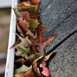 Clogged gutters filled with fall leaves  in Vineland
