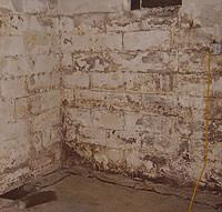 Peeling, Chipping, Basement Wall Coatings in Cherry Hill
